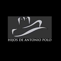 logo-antoniopolo