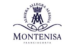 montenisa_brut_pdf__1_pagina_-2